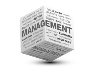 Formation en management et développement d'une entreprise